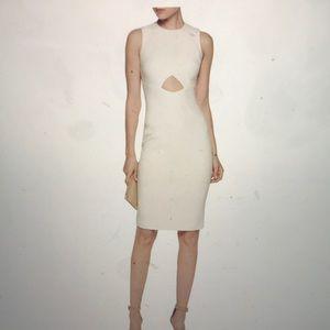 Brand New Elizabeth & James white dress